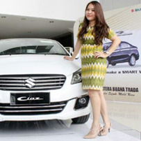 Sales Marketing Mobil Dealer Suzuki Pekanbaru Riau