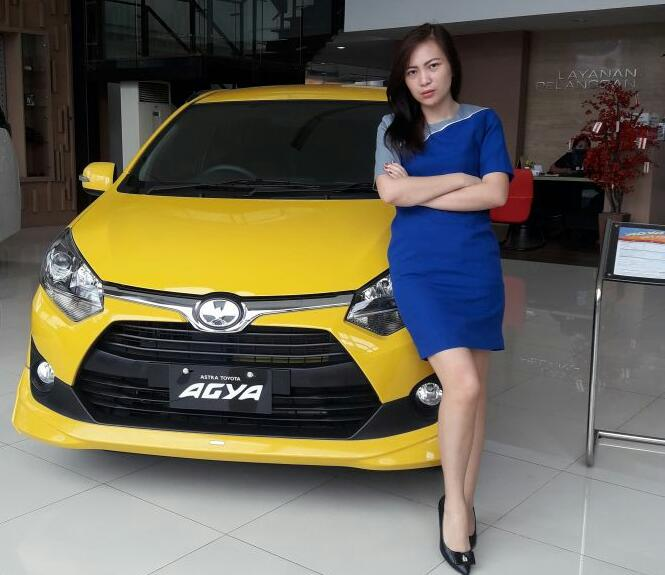 Sales Marketing Mobil Dealer Toyota Shintia