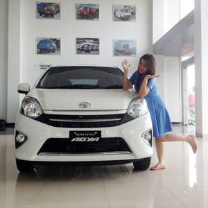 Sales Marketing Mobil Dealer Toyota Tanjung Pinang Rika