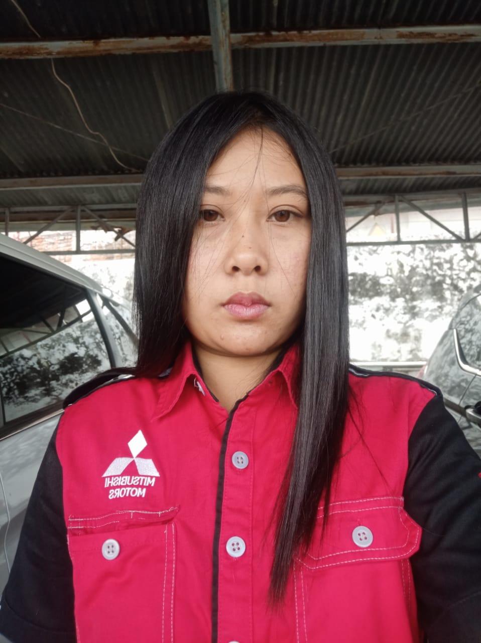 Sales Marketing Mobil Dealer Mitsubishi Garut Fera